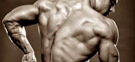 Специализация за гръб от Стюарт МакРобърт