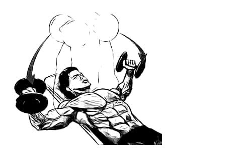 Как да тренираме ГЪРДИ