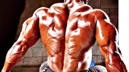 Специализация за гръб