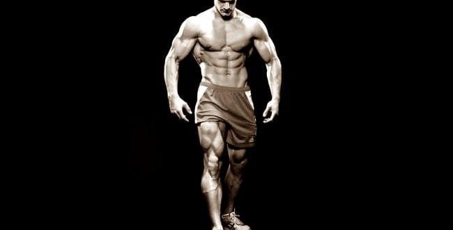По една мускулна група на ден