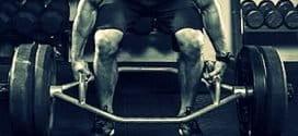 Мускулна маса за Хардгейнъри