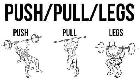 Сила и Мускулна маса с Push-Pull-Legs